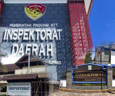 Memperkuat Inspektorat Daerah